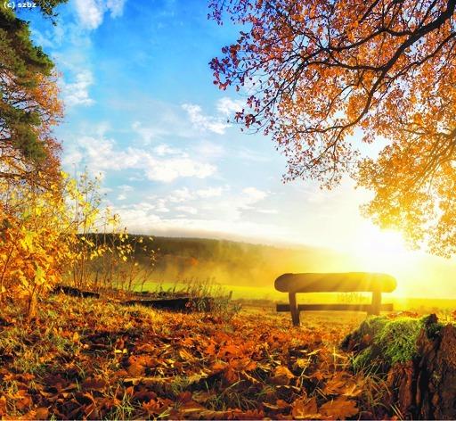 Die Schönsten Herbstbilder